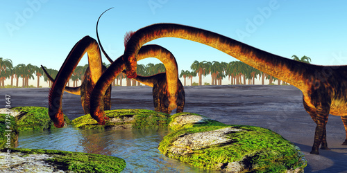Fotografia Dinosaur Drinking Spring - A herd of Barosaurus dinosaurs find a luscious water spring to quench their thirst during the Jurassic Period