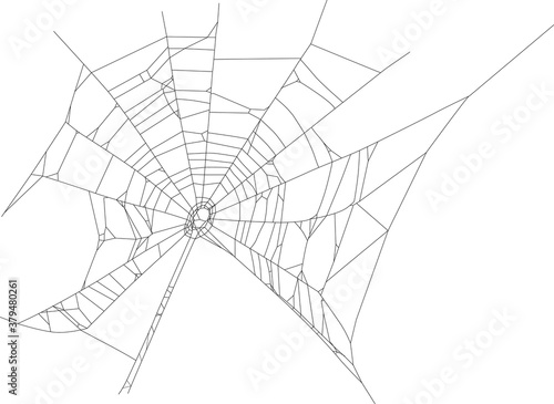 Photo black isolated old spider web illustration