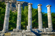 Ionic Columns Of The Temple Of...
