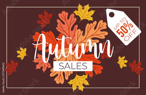 Tela autumn sale poster with lettering and half price tag in brown background