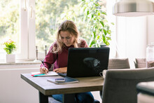 Female Teenager Studying At Home