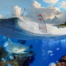 Separated Image. Oceanview With Breaking Surfing Wave And Professional Windsurfer On A Board  Under Sail And Angry Hungry Bull-shark Swiming Underwater Over Coral Reef
