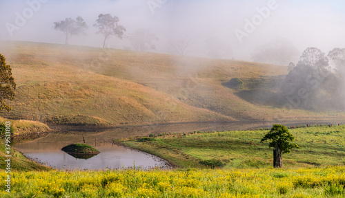 Fototapeta A foggy day in the country with rural farmland and dam obraz