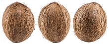 Three Coconuts - Large Brown T...