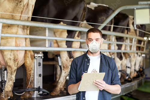 Fototapeta agriculture industry, farming, people, milking and animal husbandry concept - young man or farmer with clipboard and cows at rotary parlour system on dairy farm wearing mask for protection from virus obraz
