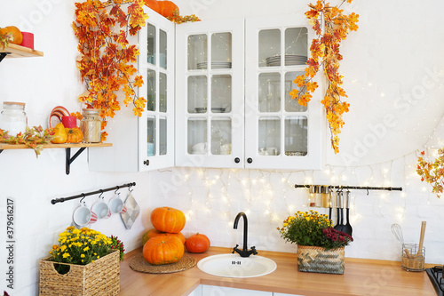 Fototapeta autumn pumpkin in the kitchen on wood table obraz