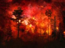 Massive Forest Fire, Intense F...