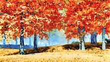 Colorful Autumn Maple Forest W...