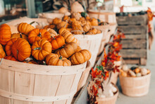 Red Pumpkins In Baskets By Store On Farm. Autumn Fall Harvest. Store Outdoor Decoration. Thanksgiving And Halloween Holiday Preparations. Colourful Fresh Ripe Seasonal Vegetables.