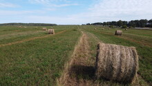 Field And Haystack