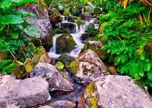Waterfall Stream With Rocks Co...