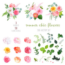 Orange Ranunculus, Pink And Yellow Rose, White Hydrangea, Peony