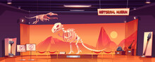 Dinosaur Skeleton In Museum Of History. Dino Tyrannosaurus Rex And Pterodactyl Fossils And Ancient Artifacts At Paleontological Exhibition. Paleontology Archeology Science Cartoon Vector Illustration