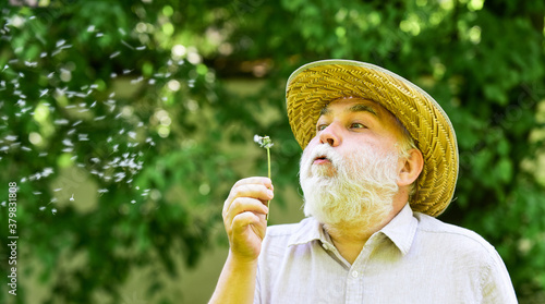 Fototapeta Alzheimer dementia. concept of cognitive impairment. Joy during early spring. old age and aging. spring village country. symbol of thin gray hair. old man blow dandelion flower obraz