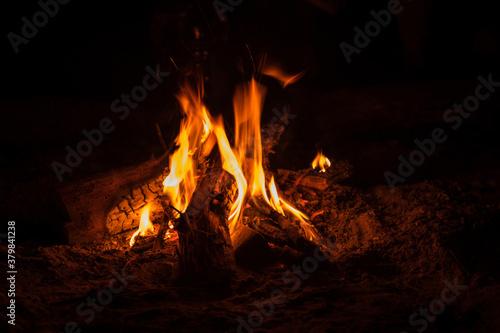 Campfire at tourist camp at nature Canvas Print