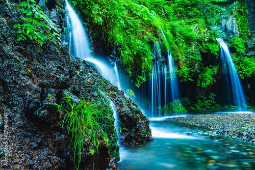 Fototapeta 森の中の滝