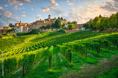Neive village and Langhe vineyards, Piedmont, Italy Europe.