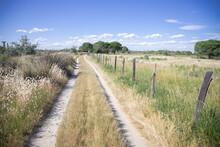 Camargue Country Lane Horizontal