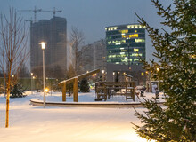 Winter, Park, City, Snow