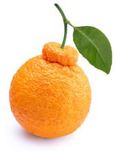 Orange Fruit With Leaf Isolated On White Background, Fresh Dekopon Orange Or Sumo Mandarin Tangerine On White Background (With Clipping Path)