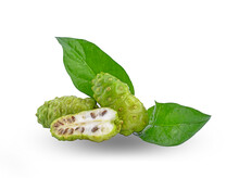 Fresh Noni Leves&fruit On A Wh...