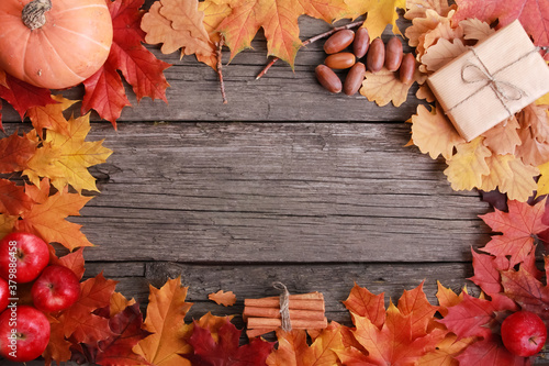 Fototapeta Orange pumpkin, spice, apples, acorns, craft gift box, colorful fall leaves on old wooden background. Copy space, frame, border. Autumn, harvest, thanksgiving concept obraz