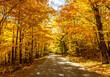 A Road at Autumn in Door County of Wisconsin