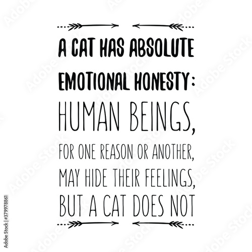 Photo A cat has absolute emotional honesty human beings, for one reason or another