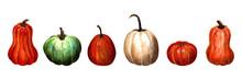 Set Of Pumpkins On White Backg...