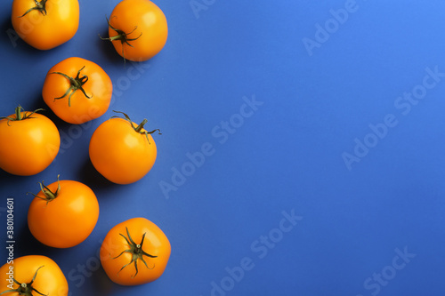 Yellow tomatoes on blue background, flat lay. Space for text