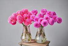 Lilac And Pink Dahlias In Glass Jug, Neutral Wall Background. The Work Of The Florist At A Flower Shop. Handsome Fresh Bouquet. Flowers Delivery
