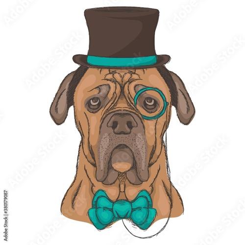 Canvas Print Bulldog character