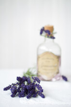 Lavender Water And Fresh Lavender Sprigs
