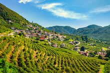 Prosecco Hills, Vineyards And ...