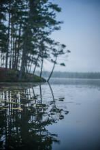 Wooland Lake At Sunrise