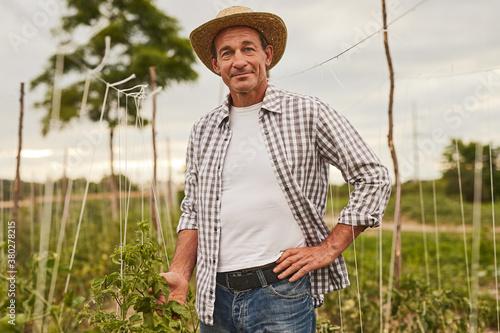 Cuadros en Lienzo Happy farmer standing on green plantation