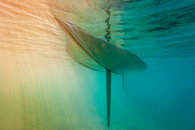 Underwater Hull Of Wayfarer Sailboat Dinghy In Calm Water
