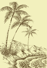 Palm Trees Beach On Sea Shore, Mountains In The Background Hand Drawinng