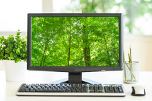 Computer Screen Showing Greenery