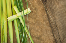 Palm Leaves For Palm Sunday