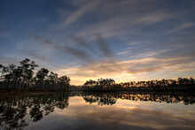 Sunrise Through Florida Slash ...