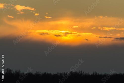 Piękny pomarańczowy zachód słońca nad lasem