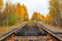 Old Railway In The Autumn Fore...