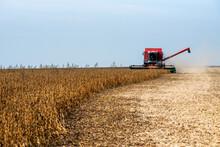 The Combine Harvests Grain Crops