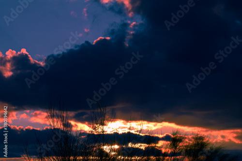 zachód słońca chmury niebo błękit rośliny