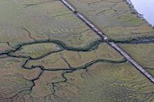 Aerial Photograph Wooden Walkway Thru Spartina Tidal Estuarine Wetlands Brunswick Georgia