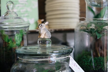 Tiny Carved Bunny On Top Of Terrarium