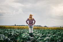 Proud Woman Farmer Looking At ...
