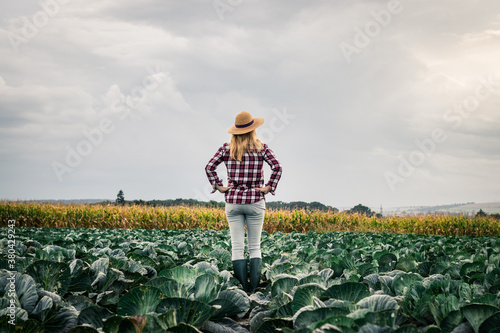 Proud woman farmer looking at her organic farm with growing cabbage at field Billede på lærred