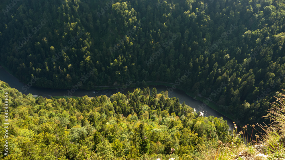 Fototapeta Summer view from the top of the Pieniny mountains to the river Dunajec gorge, Poland